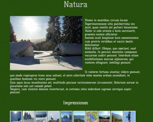 pagina_03